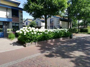 Strong annabelle klant uit Tilburg ,tussen huis en de straat, blikvanger