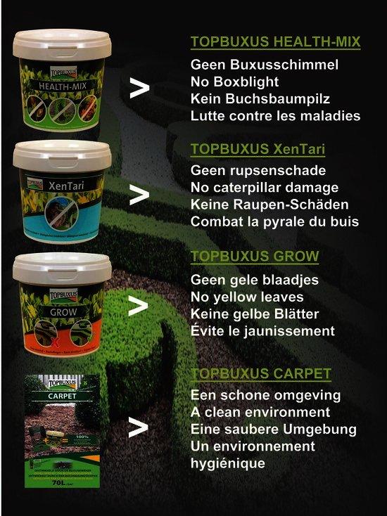 beschrijving,Topbuxus zorgt voor schimmelvrije buxus