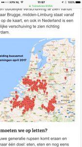 Buxusmot epedemie april en mei 2017 , later kwam gemeente Beuningen en gedeelte Maas & Waal nog aan de beurt.