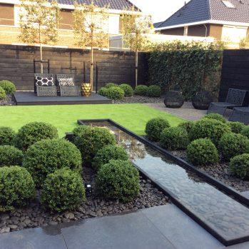 Wilt u ook een klasse tuin,de mooiste Ilexbollen koop je bij Buxuskoning,