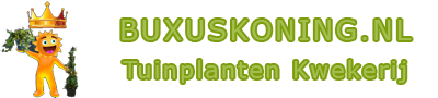 Buxuskoning