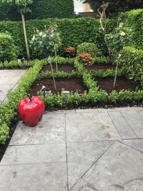 2019 geplant in Amstelveen , 17 cm pot met ilex Caroline Upright